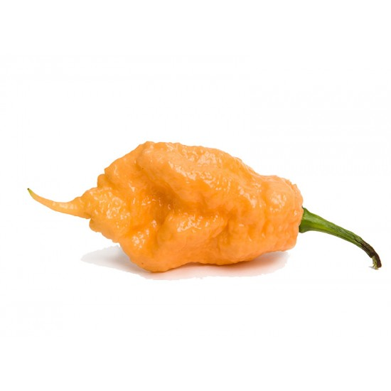 Carolina Reaper Yellow Pepper Seeds