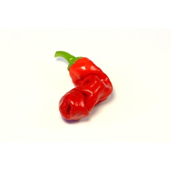 Peter Pepper Red Pepper Seeds